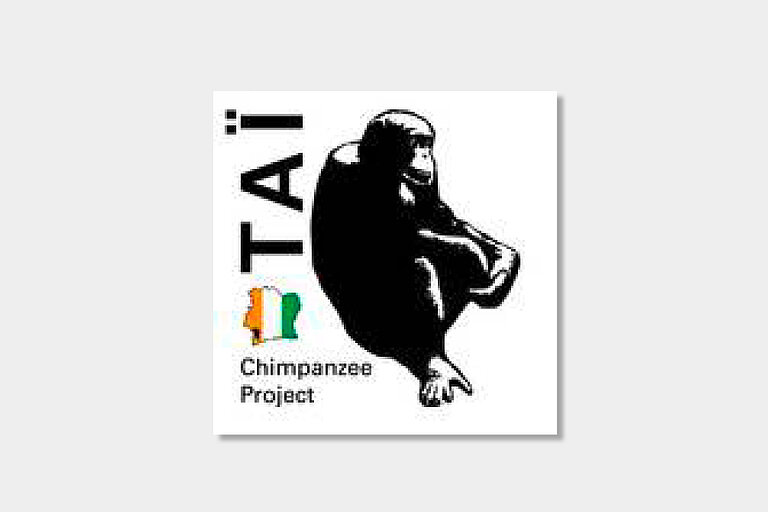 Taï_Chimpanzee_Project.jpg