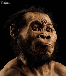 Homo naledi (National Geographic)