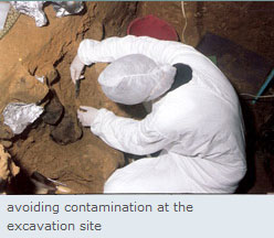 excavation_site.jpg