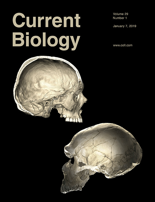 cover2019-01_CurrentBiology.jpg